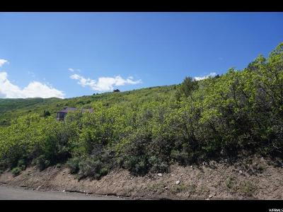 Wasatch County Residential Lots & Land Under Contract: 1605 S Ridgeline Dr