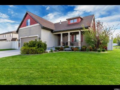 Wasatch County Single Family Home For Sale: 551 S 820 E