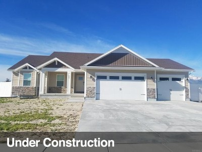 Tooele County Single Family Home For Sale: 589 E Chan Cv
