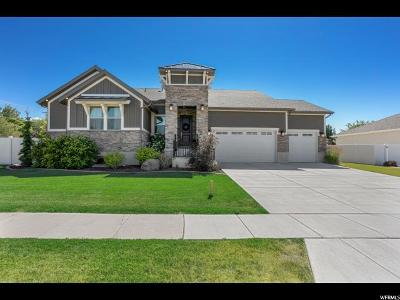 Davis County Single Family Home For Sale: 717 S 2200 W
