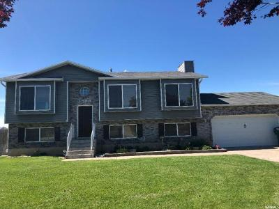 Weber County Single Family Home For Sale: 3599 W 3550 S