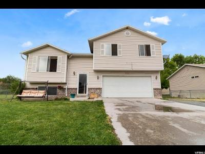 Grantsville Single Family Home For Sale: 676 E Easton Ct