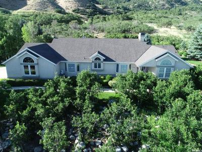 Alpine Single Family Home For Sale: 4284 Alpine Cove Dr