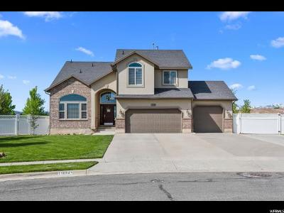 Riverton Single Family Home For Sale: 11884 Stone Crest Ln