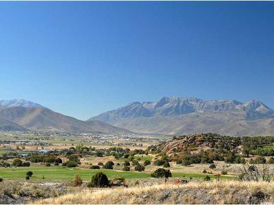 Wasatch County Residential Lots & Land Under Contract: 741 N Pinto Knoll Cir (Lot 525)