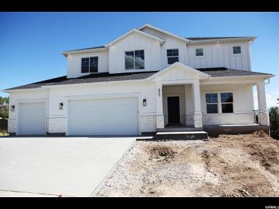 Pleasant Grove Single Family Home Under Contract: 577 N 400 E #2