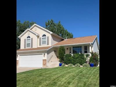 Stansbury Park Single Family Home For Sale: 722 Country Clb