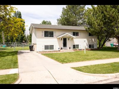 Syracuse Single Family Home Under Contract: 2110 S 3300 W
