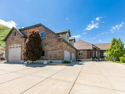 Layton Single Family Home For Sale: 3194 E Layton Ridge Dr N