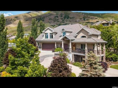 Draper Single Family Home For Sale: 13371 S Beechers Brook Way