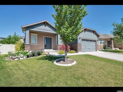 Lehi Single Family Home For Sale: 3752 N Hot Springs Ln