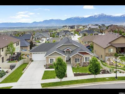 Herriman Single Family Home For Sale: 5371 W Esher S