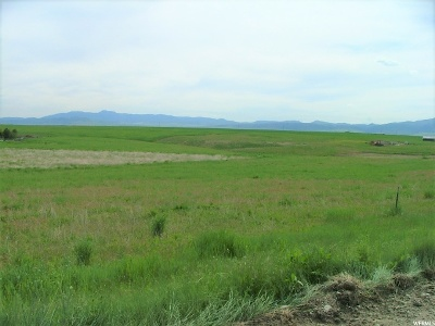 Preston Residential Lots & Land For Sale: 2280 E 2000 N