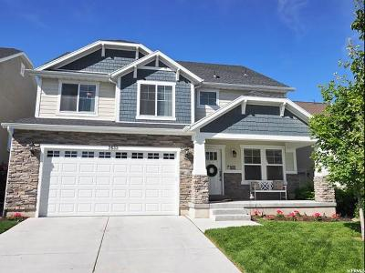South Jordan Single Family Home Under Contract: 3633 W District Peak Ct