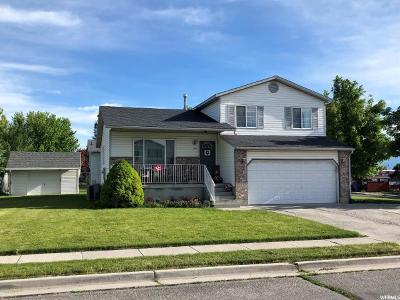 North Logan Single Family Home For Sale: 308 E 2475 N