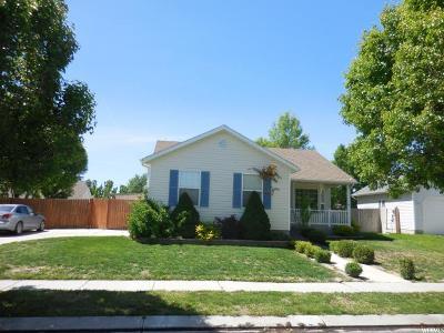 Eagle Mountain Single Family Home For Sale: 1860 E Dove Way N