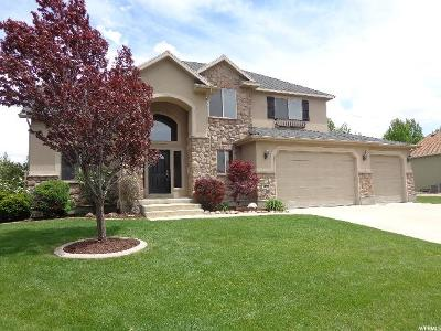 Wasatch County Single Family Home For Sale: 1099 S 650 W