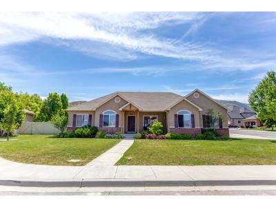 Payson Single Family Home Backup: 536 E Liddle Ct