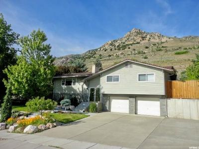Brigham City Single Family Home For Sale: 826 Highland Blvd
