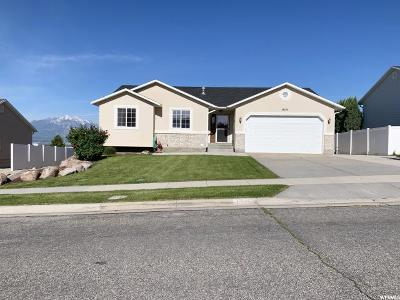 Riverton Single Family Home For Sale: 14147 S Murdoch Peak Dr