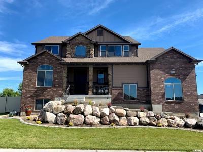 Davis County Single Family Home For Sale: 4484 W 1315 S