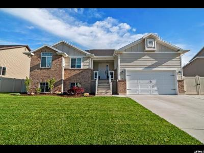 Weber County Single Family Home For Sale: 235 E 2150 N