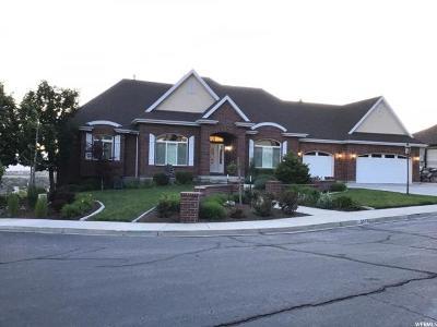 Cedar Hills Single Family Home For Sale: 3576 Cascade Springs Cv