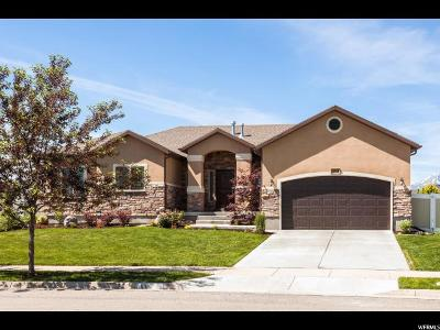 Riverton Single Family Home For Sale: 11952 S Scenic Acres Dr