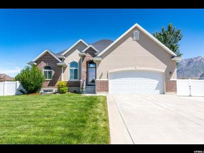 Weber County Single Family Home For Sale: 2934 W 3450 N
