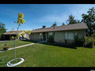 Payson Single Family Home Under Contract: 395 S Ridge Ln