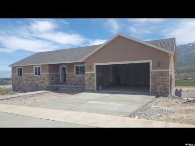 Santaquin Single Family Home Under Contract: 1305 Cedar Pass Dr #117