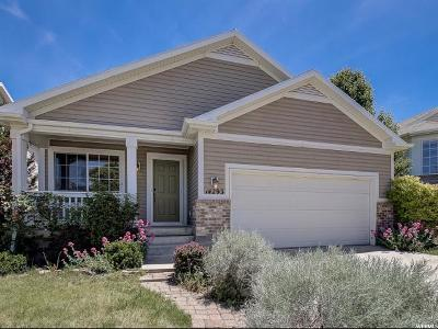 Draper Single Family Home For Sale: 14293 S Mayfield Dr