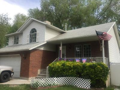 West Jordan Single Family Home For Sale: 1573 W 7700 S