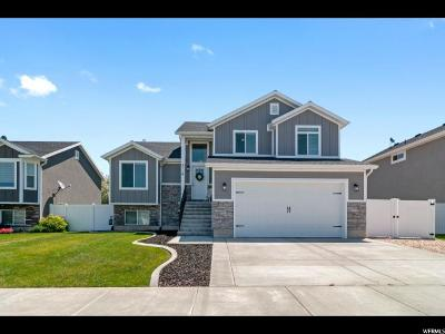 Weber County Single Family Home For Sale: 2116 N 925 W