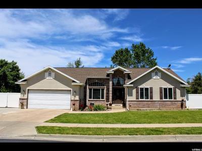 Davis County Single Family Home For Sale: 316 Meadow Lark Cir