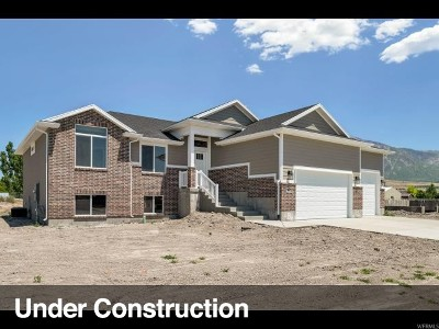Weber County Single Family Home For Sale: 2427 W 3300 S #301