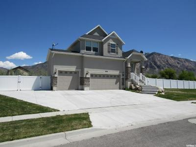 Weber County Single Family Home Under Contract: 988 N Wahlen Way