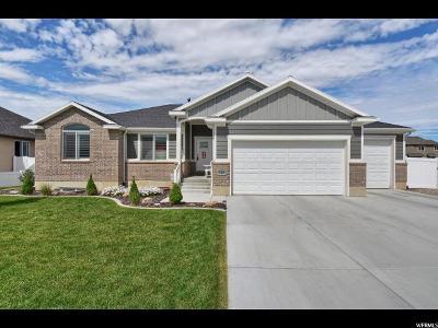 Davis County Single Family Home For Sale: 828 S 3175 W