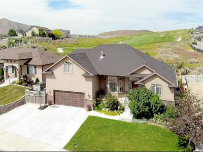 Eagle Mountain Single Family Home For Sale: 8998 N Spy Glass Dr W
