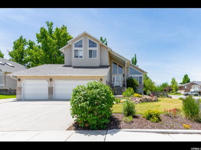 Stansbury Park Single Family Home Under Contract: 217 Lakeview