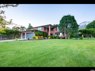 Alpine Single Family Home Under Contract: 1251 N Grove Dr