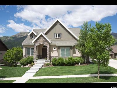 Wasatch County Single Family Home For Sale: 5271 N Old Gate Rd