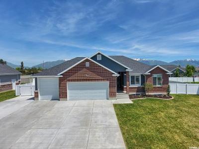 Davis County Single Family Home For Sale: 962 N 2550 W