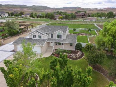 Bluffdale Single Family Home For Sale: 15236 S Mountainside Dr W