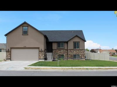 Weber County Single Family Home For Sale: 2269 N 250 W