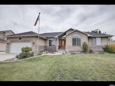 West Jordan Single Family Home For Sale: 7874 S Peak Dr W