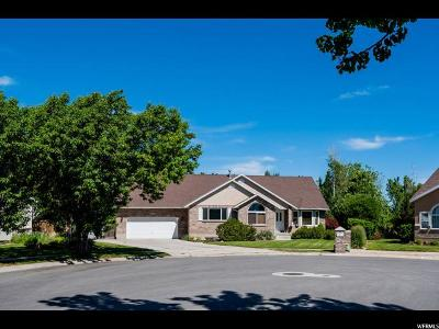 South Jordan Single Family Home For Sale: 11224 S 2580 W