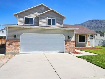 Pleasant Grove Single Family Home Backup: 852 W 850 N