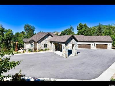 Salt Lake City Single Family Home For Sale: 3490 S Hillside Ln