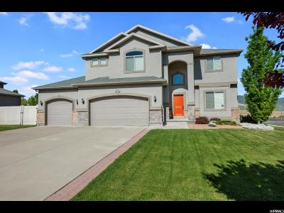 West Jordan Single Family Home For Sale: 9086 S Coppering Ave